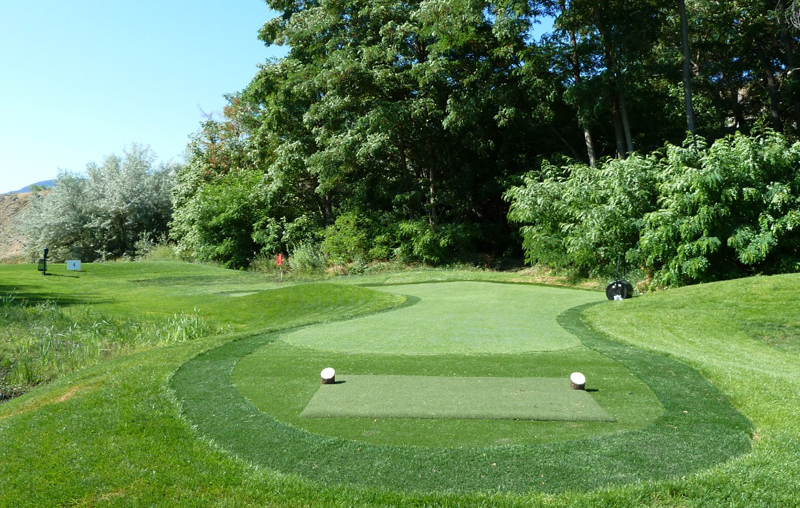 Putting Greens Amp Golf Xtreme Green Synthetic Turf